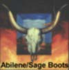 Fashion Boots from Sage Boot Company